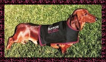 Baron at rest